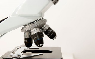 Эко при эндометриозе: какие шансы ?
